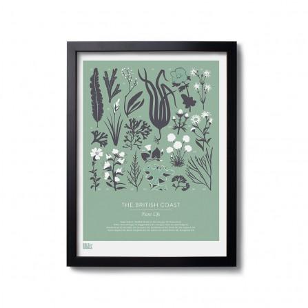 Affiche BOLD&NOBLE British Plant Green 30X40cm