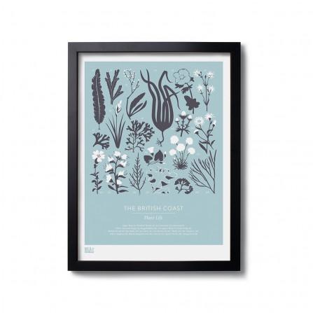 Affiche BOLD&NOBLE British Plant Blue 30X40cm